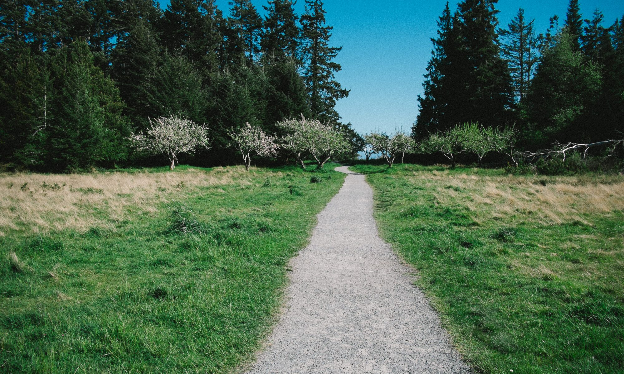 A Path to Process