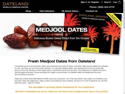 Dateland 1